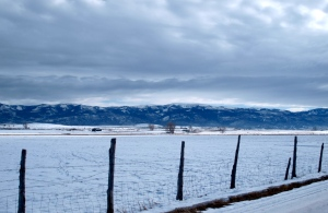 Joe Ray's pastures.